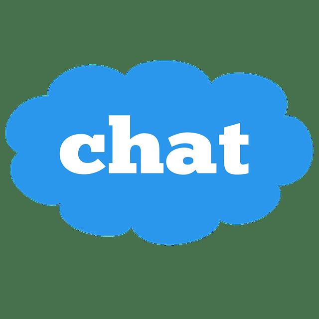 Nuevo chat añadido a la web