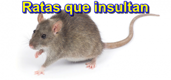 Las ratas que insultan en la red (Insultos en twitter en youtube…etc)