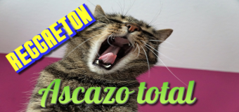 Canciones horripilantes asquerosísimas (más reggaeton de mierda)